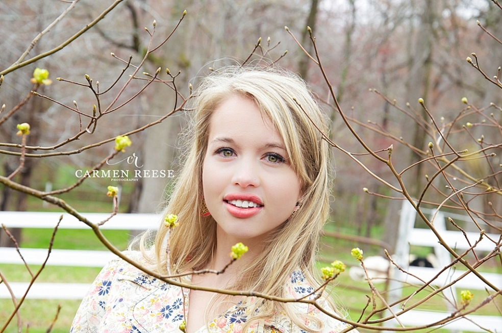 Carmen-Reese-Huntersville-nc-photographer-newborn-baby-birth-maternity-child-family-model-pet-couple_0152